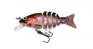 Looter S Rainbow Trout